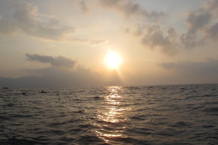 nunggu dolphin di lautan samudra hindia..cuma make jukung