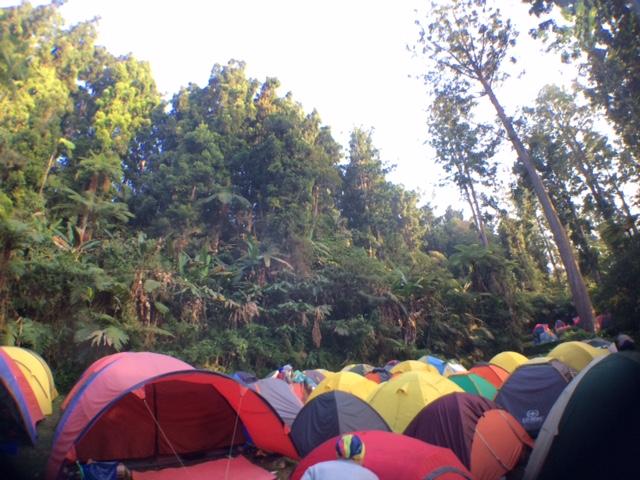 camping indie